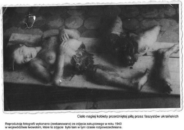 Картинки по запросу Преступления бандеровцев. Хатынь