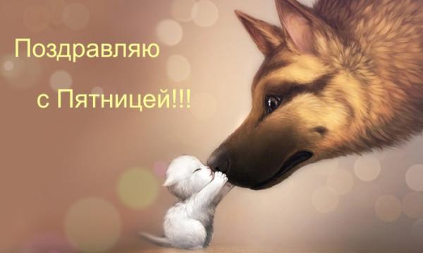 79056746_1318607265_7kotenok_i_sobaka