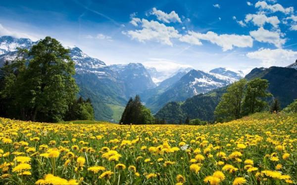 Браунвальд, Швейцария