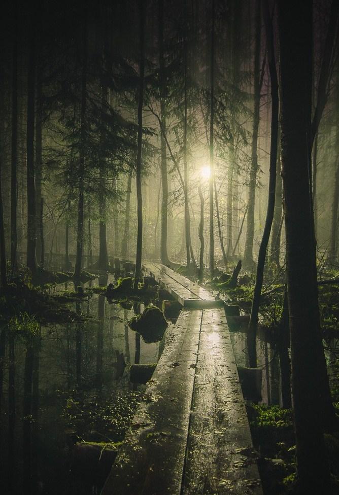 Природа-1646609