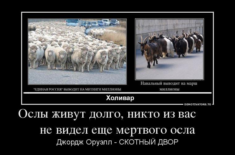 916158_oslyi-zhivut-dolgo-nikto-iz-vas-ne-videl-esche-mertvogo-osla_demotivators_ru