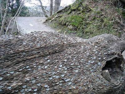 money_tree_uk