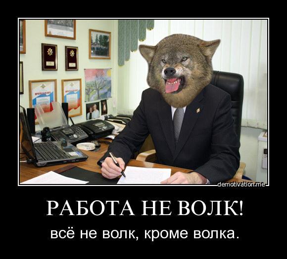 Работа не волк картинки, прости меня