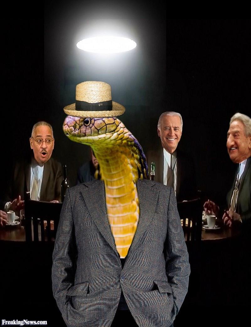Snakes-do-Rule--125614