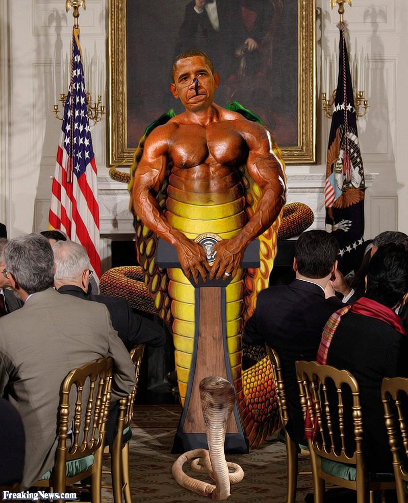 Barack-Obama-Snake-Goverment-Venom--87931
