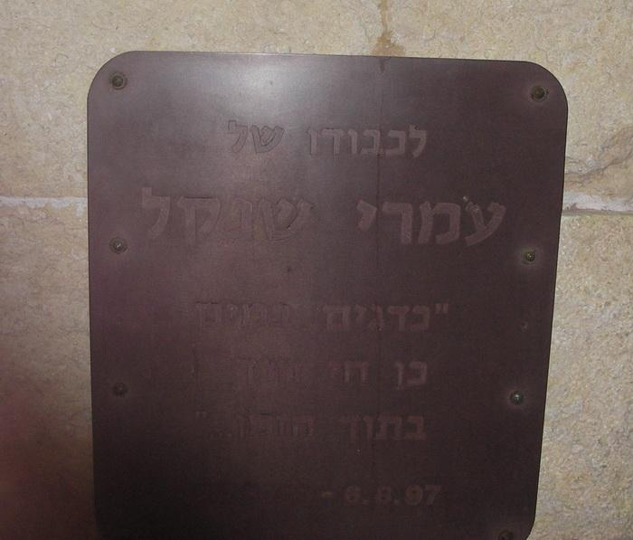 IMGP0067