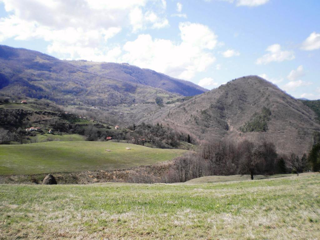 Лютица гора