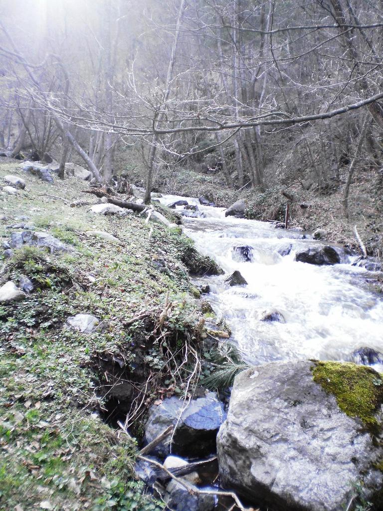 река Дубочица