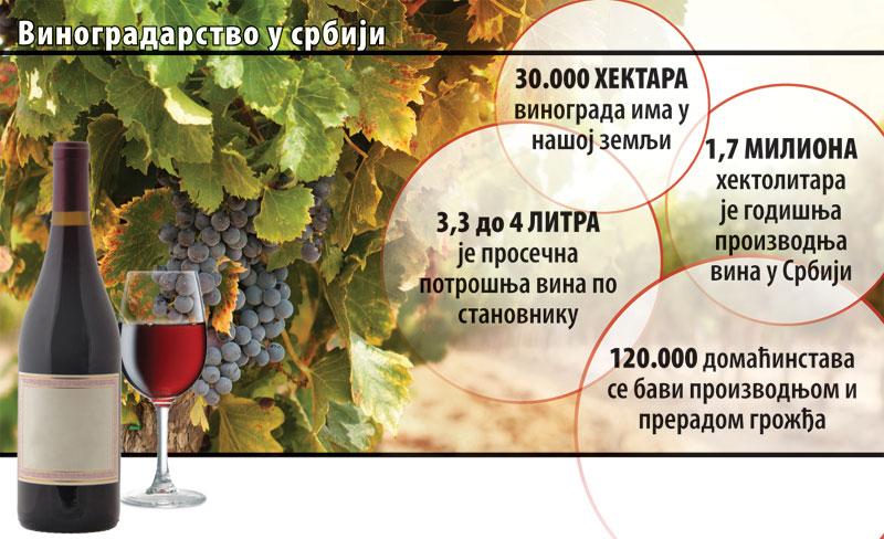 eko-Vinogradarstvo-u-Srbij