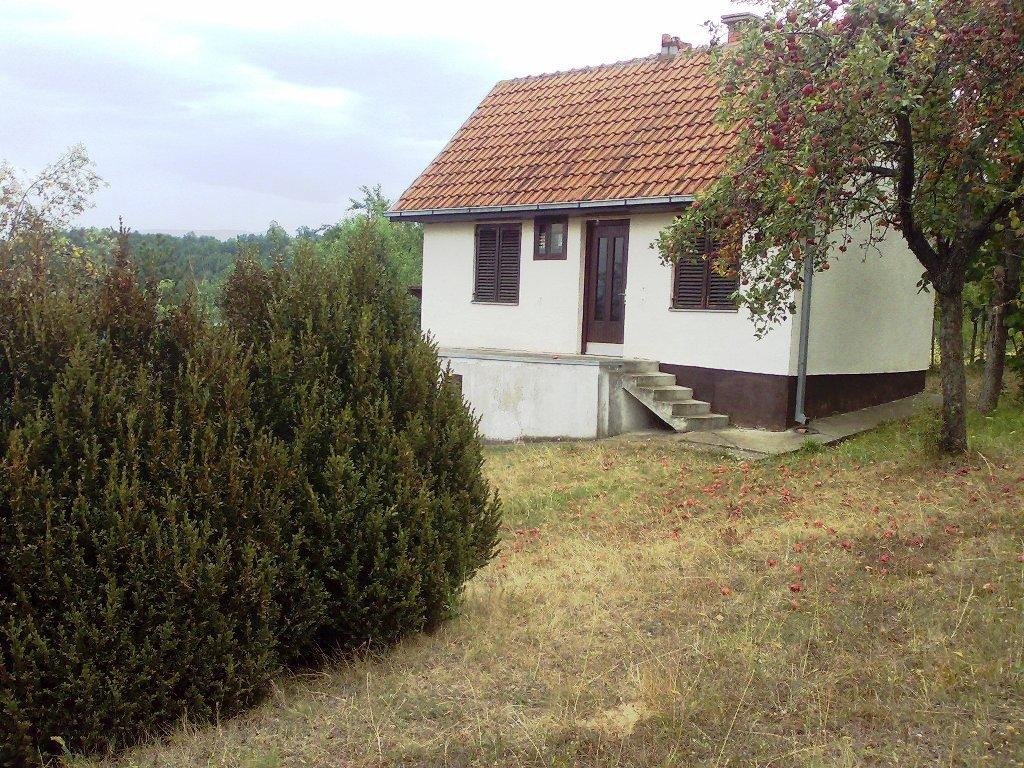 Image286