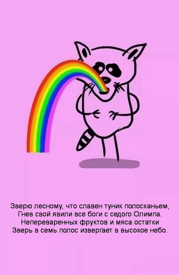 енот и радуга 4
