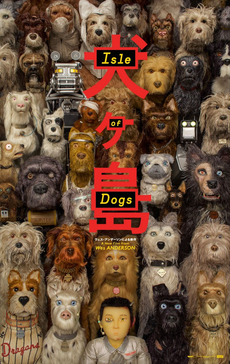 dogs1-800