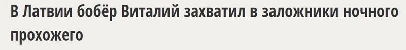 бобёр виталий 2