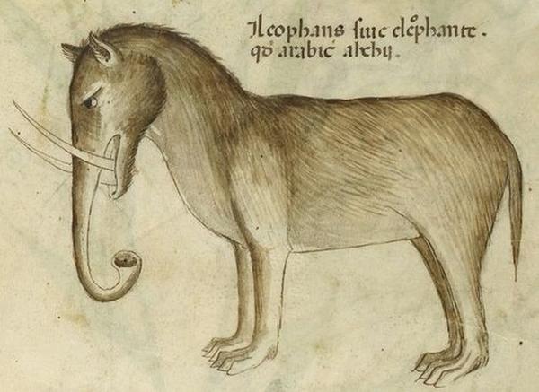 слоник1