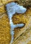 Буква на крыле бабочки