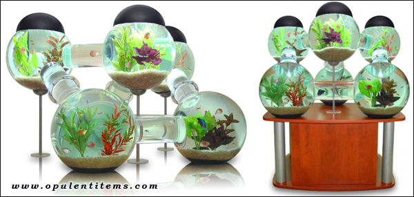 аквариум - Лабиринт