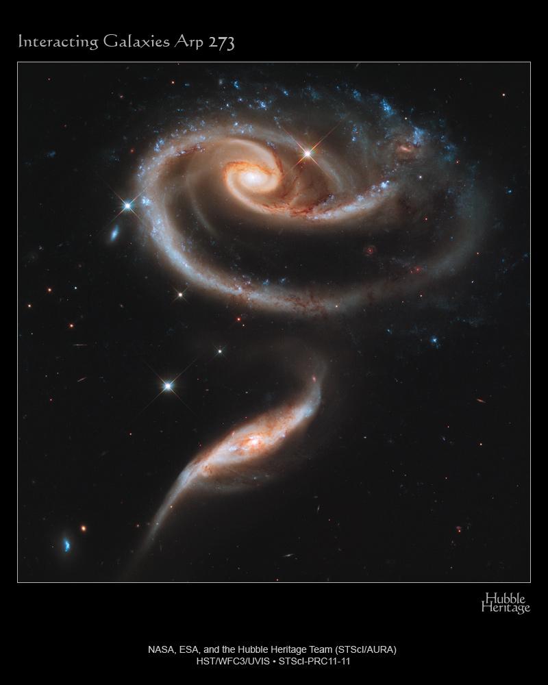 Роза из галактик