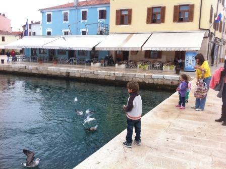 Fazana ptici i deti