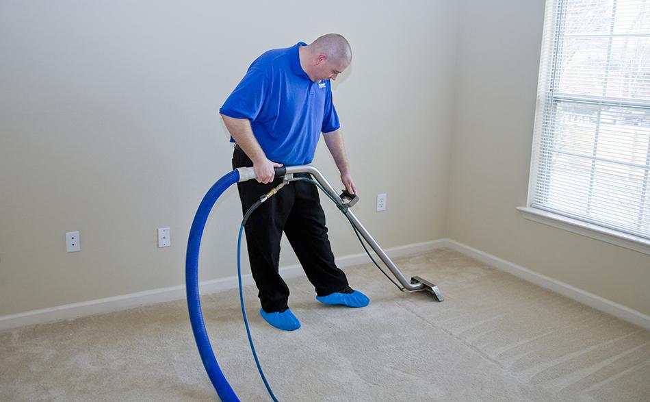 Как избавиться от плесени на ковре