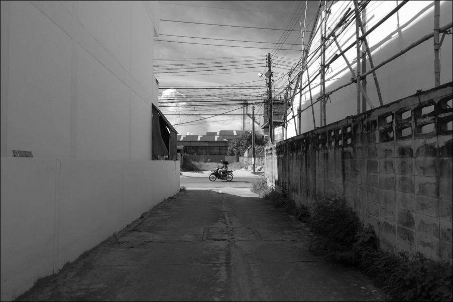 web-bw-P9016558