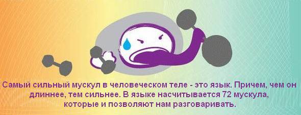 http://pics.livejournal.com/algre/pic/00019xpr