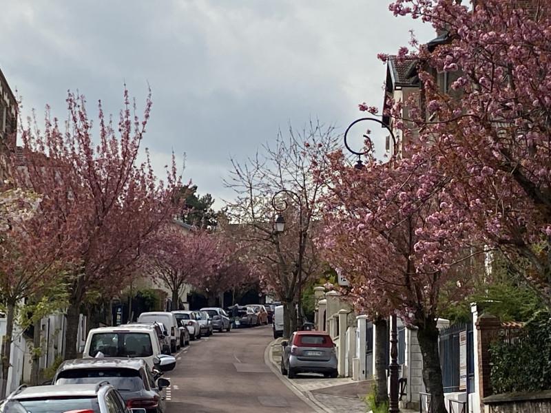 Типичный переулок Сен-Клу