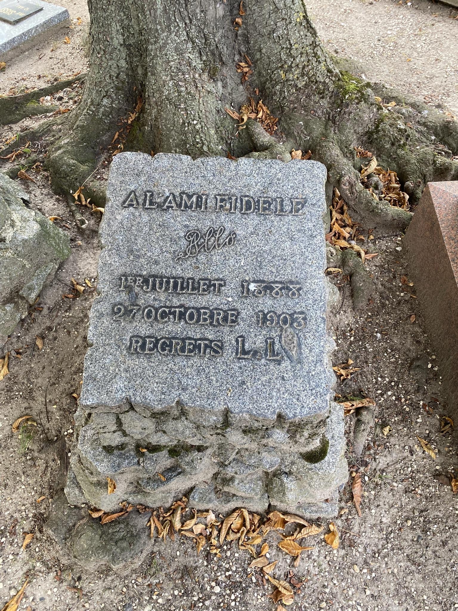 4. Одна из старейших могил