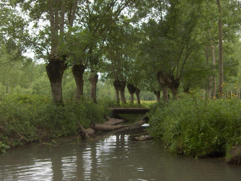 2. Здесь когда-то Анжелика с Валентином плавали в челноке по каналам, вдоль которых росли дягиль, незабудки и мята.