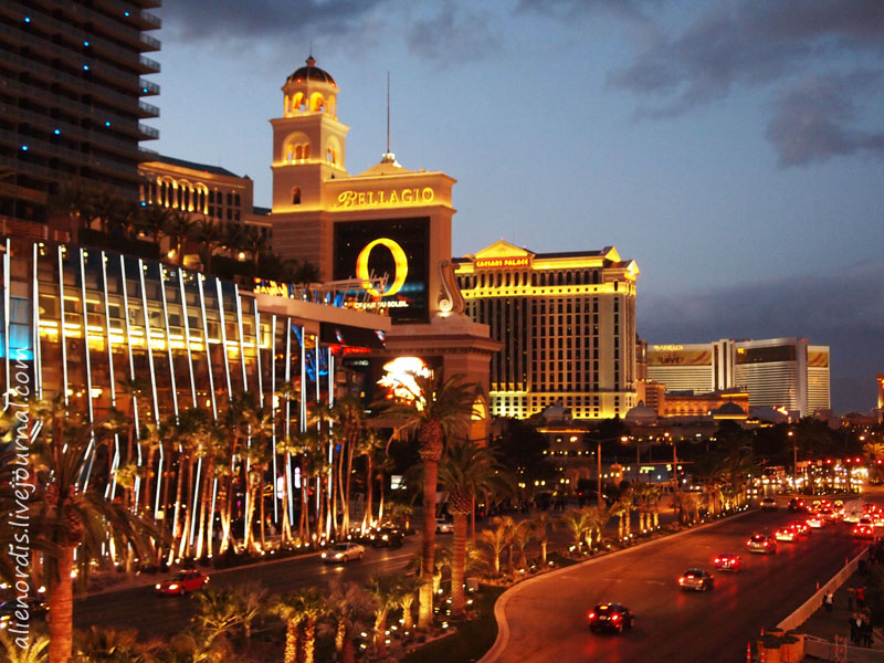 Сколько стоит фишка казино мегаполис на 100 игровые автоматы настольные игры