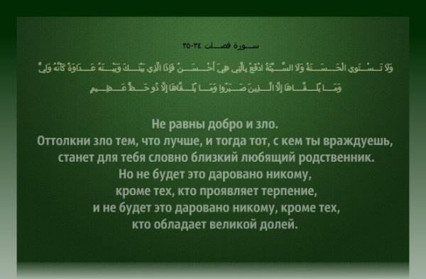 big_3136_oboi_zelenyj_fon