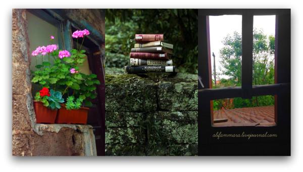 PicMonkey Collage.jpgggf
