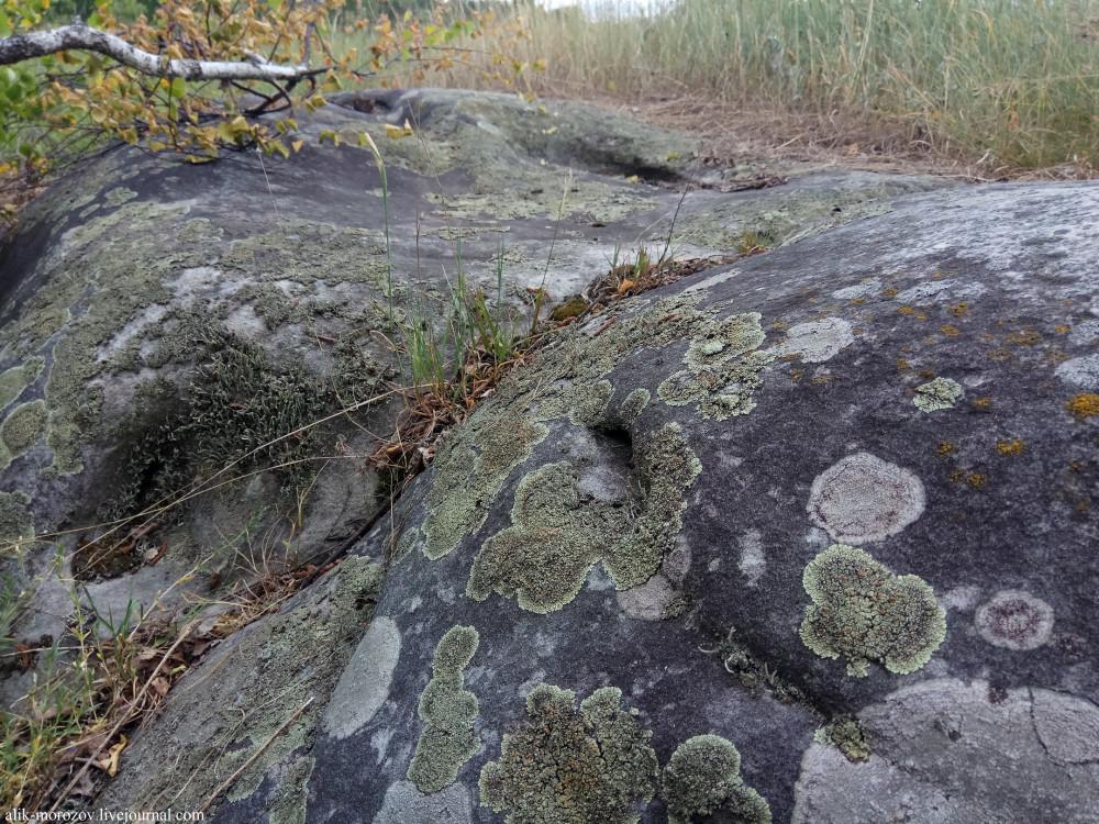 Эхо далекой истории: мегалитический комплекс в Думченском лесу. валуны, места, можно, Орловской, области, здесь, опушки, большая, часть, находится, камней, выглядят, глубине, Правда, сказали, наиболее, сделаны, Друзья, посмотрим, давайте
