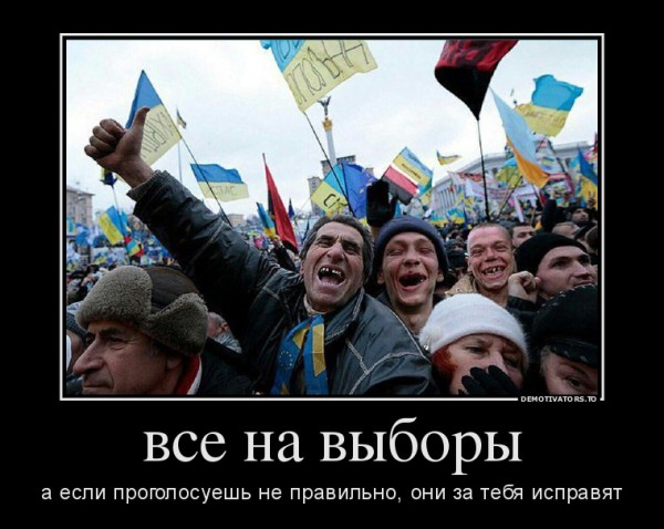 466728_vse-na-vyiboryi_demotivators_to