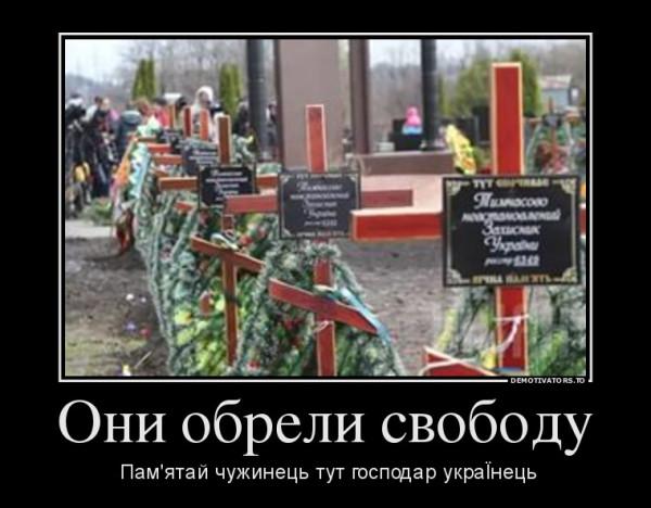 208730_oni-obreli-svobodu_demotivators_to