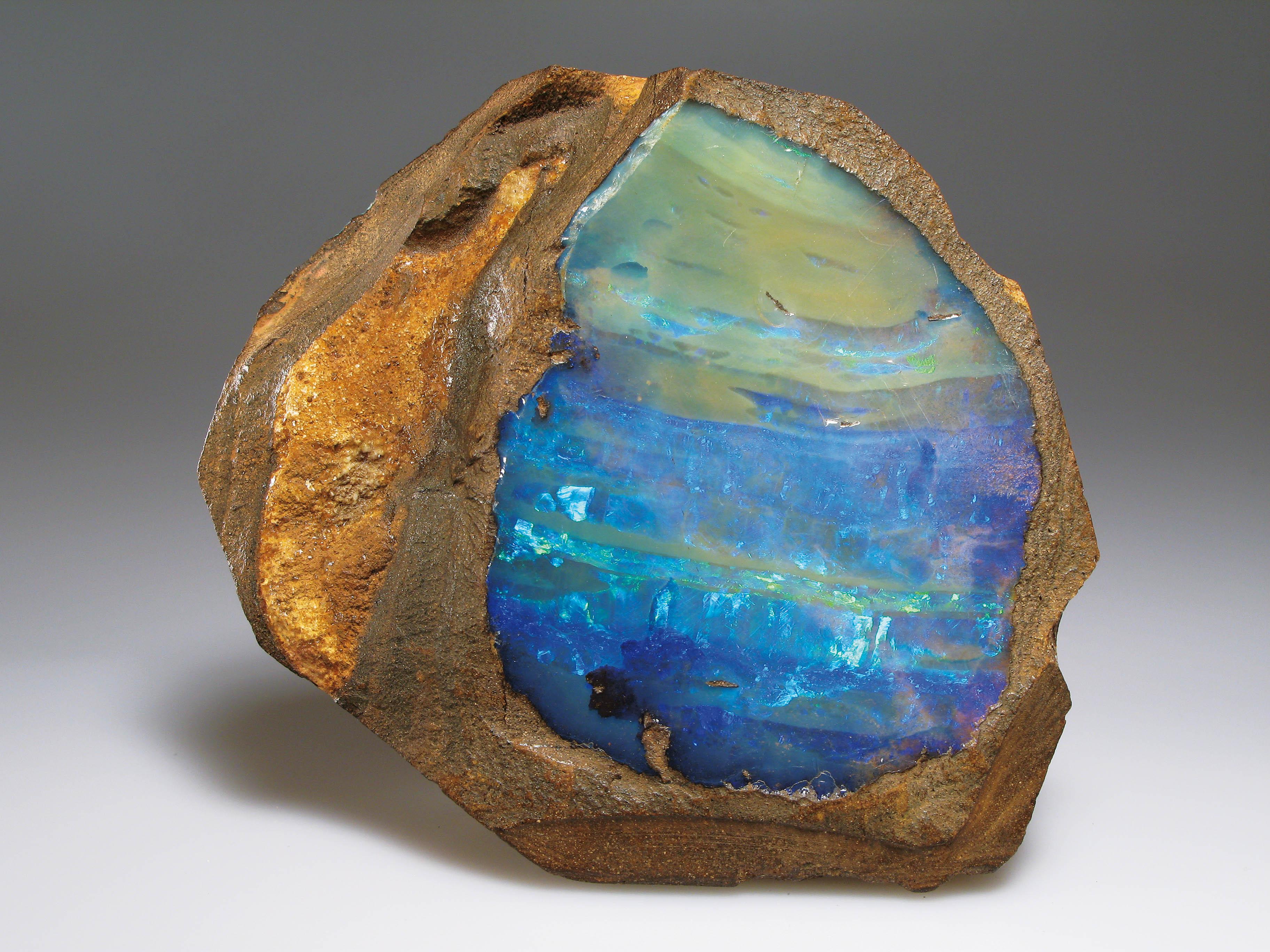 opal-sonderschau1
