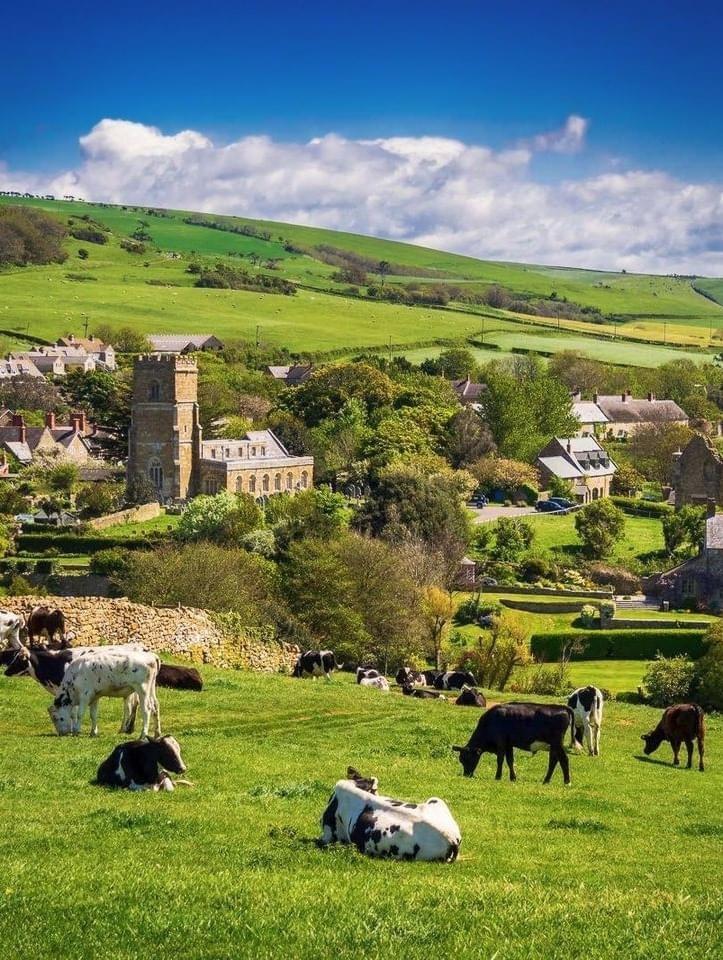 Dorset. My love -2