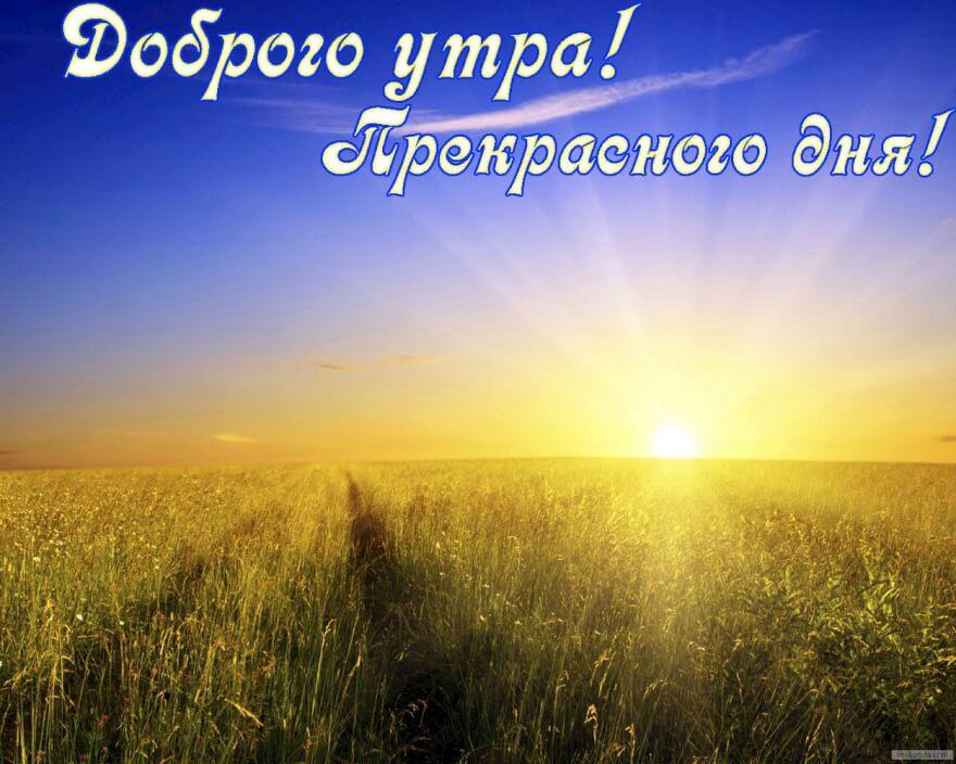 http://ic.pics.livejournal.com/alisa_morozova/63830143/647026/647026_1000.jpg