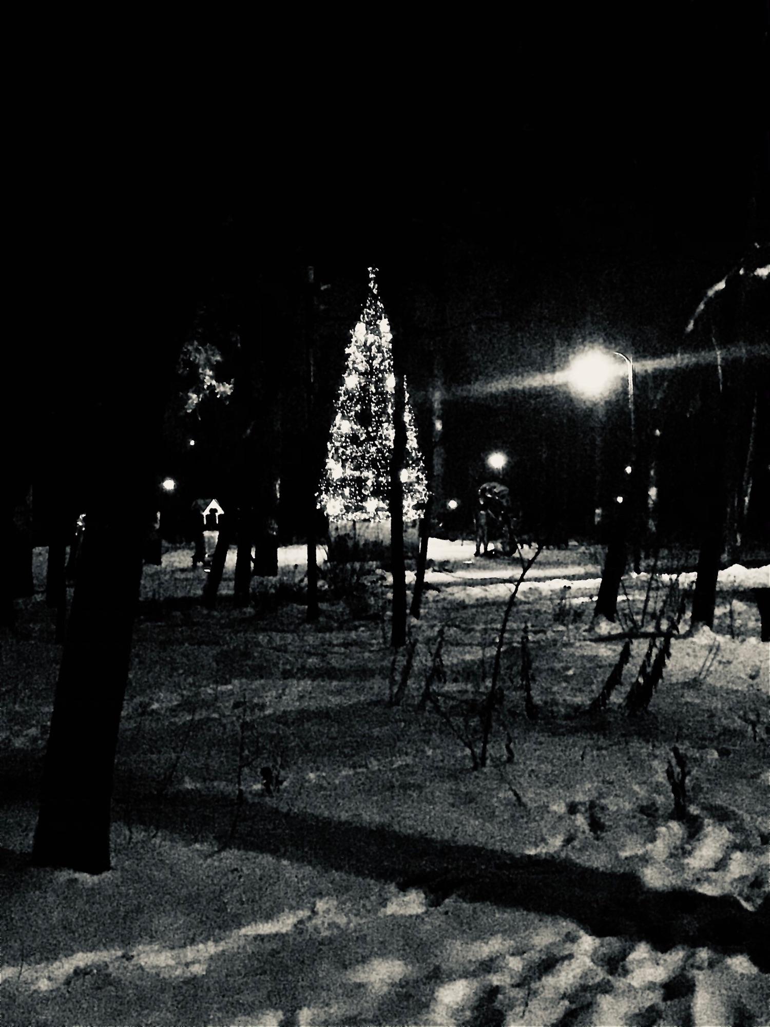 Вот такая елочка стоит в парке сказок в Томилино. Здесь очень тихо, а елочка виднеется меж сосен издалека. Медитативно переливается среди волшебных фигур своими огнями. Каждый раз, идёшь мимо неё поодаль и она будто манит к себе, как нечто таинственное и сказочное. А когда встанешь посмотреть на эту красоту, находишь успокоение и становится тихо в душе.
