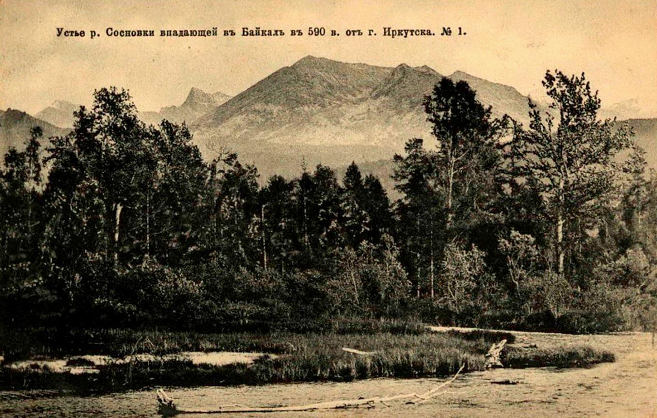Устье реки Сосновка