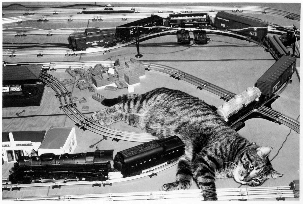 Страшная железнодорожная катастрофа