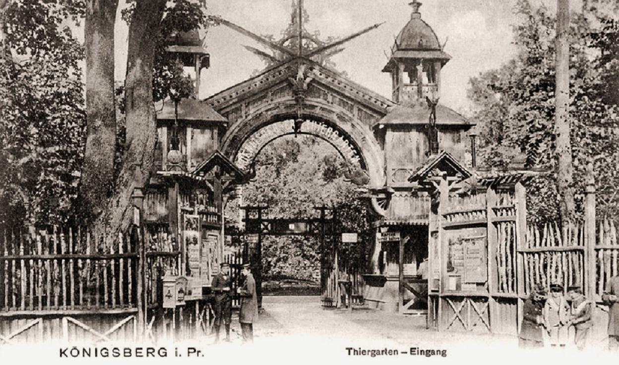 кенигсбергский зоопарк, он был не менее известен, чем берлинский