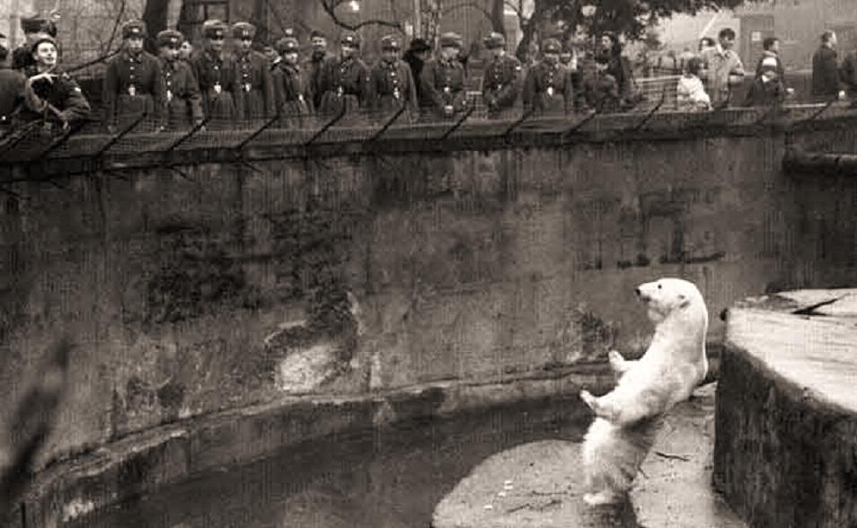 Зоопарк в советское время