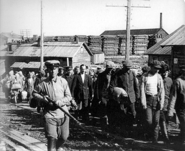 thesis on gulags History other essays: gulag complete history gulag complete history this essay gulag complete history and other 63,000+ term papers, college essay examples and free essays are available now on reviewessayscom.