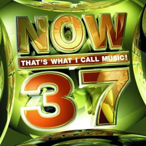 Now-37-1024x1024