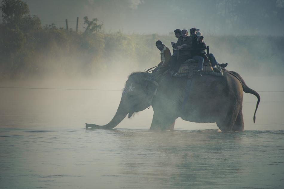slonik-v-tumane