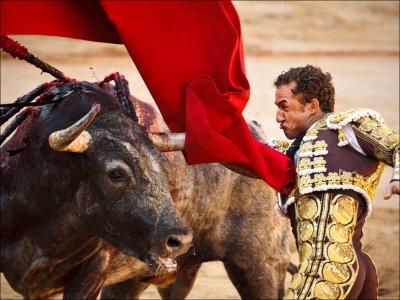 Spain_Fight