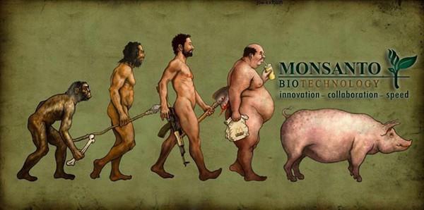 Monsanto Biotechnology