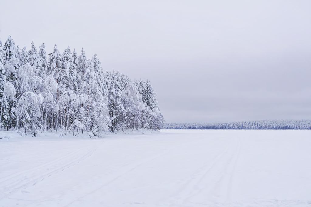 озеро Контокки зимой