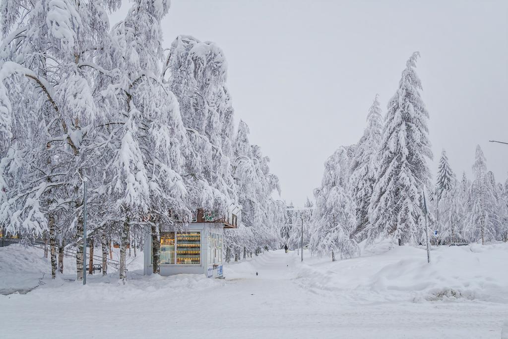 Ларек в Костомукше вид зимой