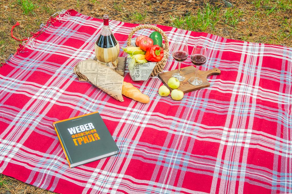 пикник в компании гриля Weber Go-Anywhere